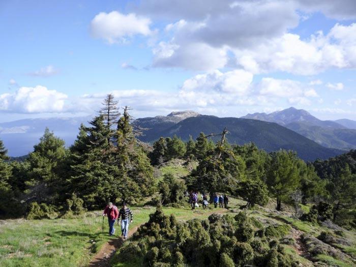 Mount Geraneia